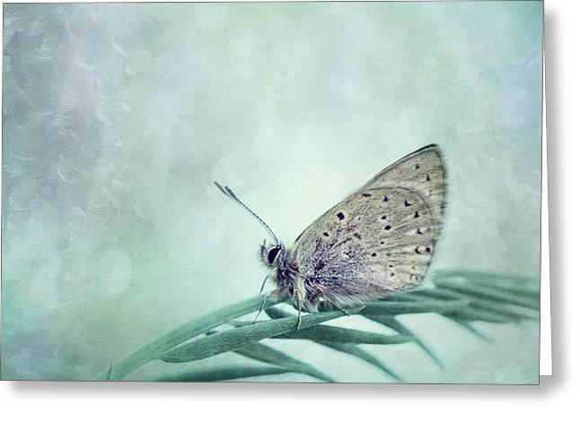 Once In A Blue Moon Greeting Card by Priska Wettstein