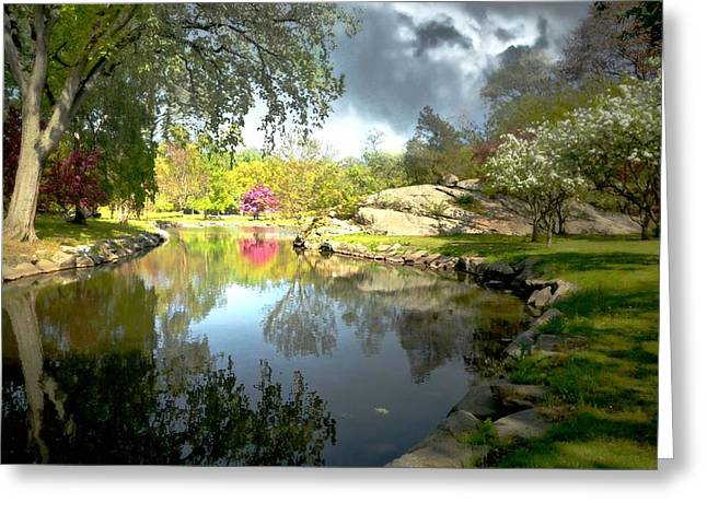 Pond In Park Greeting Cards - Once Upon A Cherry Tree Greeting Card by Diana Angstadt