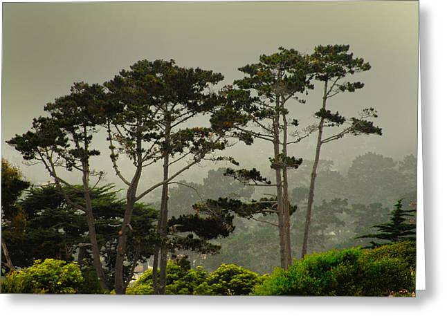 Big Sur California Greeting Cards - Oncoming Big Sur Storm Greeting Card by Don Wolf