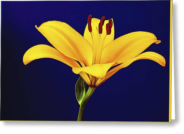 Stigma Greeting Cards - Yellow Petals Greeting Card by Maria Coulson