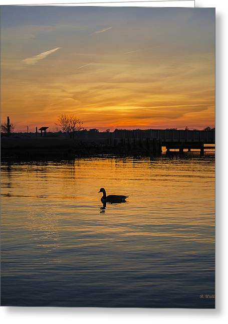 Fishing Creek Greeting Cards - One Last Gander Greeting Card by Brian Wallace