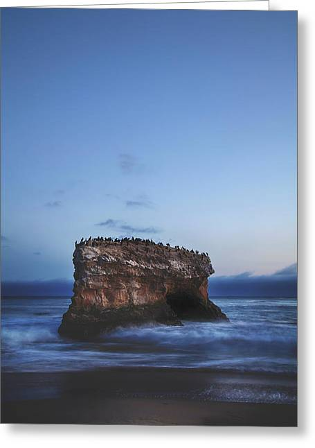 Santa Cruz Ca Photographs Greeting Cards - One More Night Greeting Card by Laurie Search