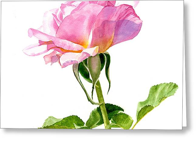 Background Paintings Greeting Cards - One Pink Rose Blossom Square Design Greeting Card by Sharon Freeman