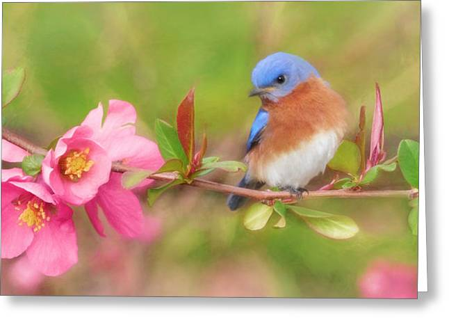 One Touch Of Nature Greeting Card by Lori Deiter