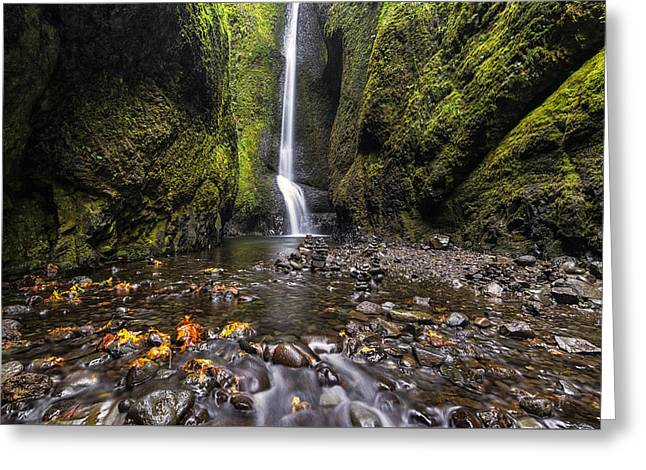 Moss-covered Greeting Cards - Oneonta Gorge Greeting Card by Mark Kiver