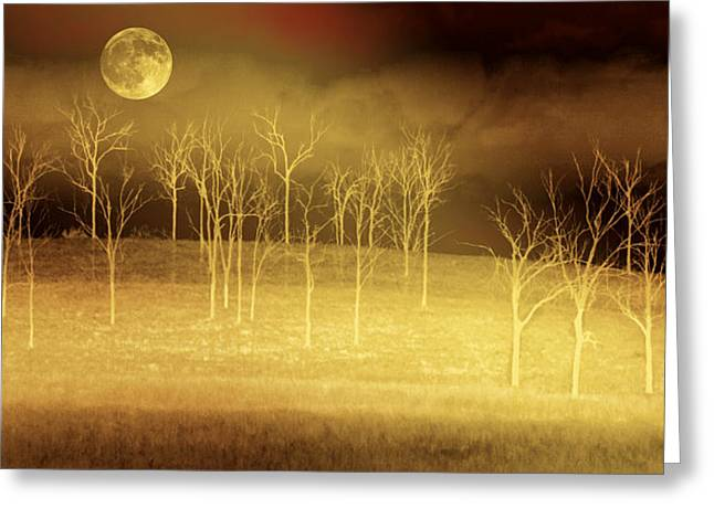 Holly Kempe Greeting Cards - Only at Night Greeting Card by Holly Kempe