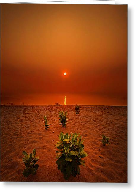 Beach Photography Greeting Cards - Only But A Few Greeting Card by Phil Koch
