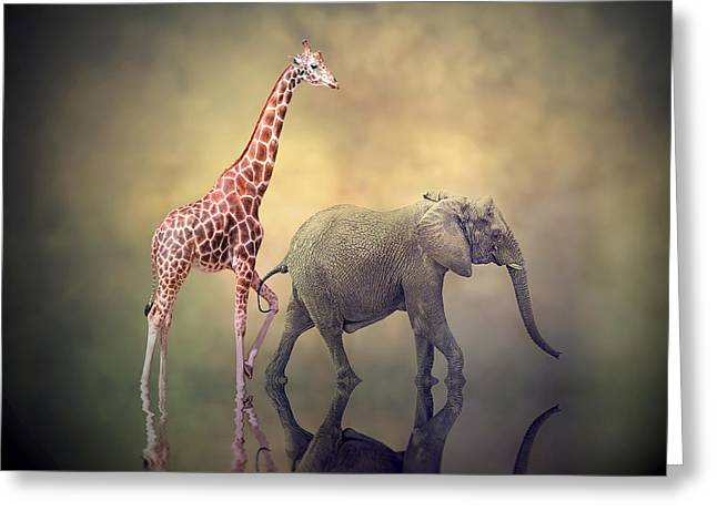 Best Friend Greeting Cards - Onward and Upward Greeting Card by Stephen Warren