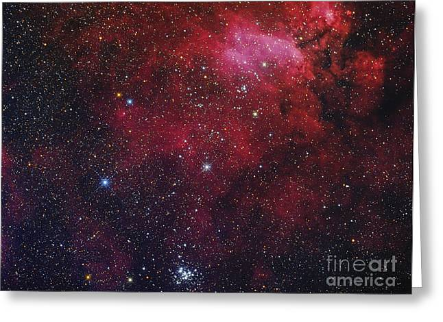 Open Cluster Ngc 6231, The Prawn Nebula Greeting Card by Roberto Colombari