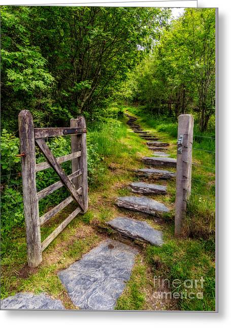 Hinges Greeting Cards - Open Country Gate Greeting Card by Adrian Evans