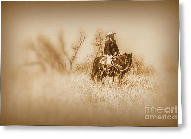 Horse Hill Preserve Greeting Cards - Open Range Greeting Card by Lynn Sprowl