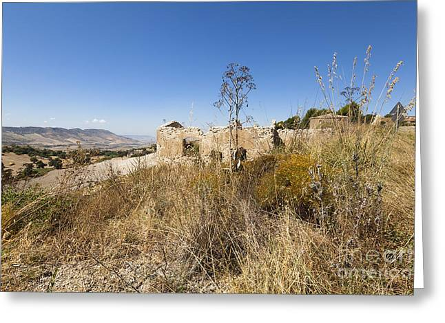 Sicily Greeting Cards - Open Range Greeting Card by Wolfgang Steiner