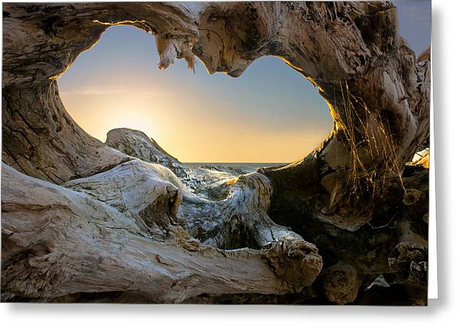 Baltic Sea Greeting Cards - Open The Window Greeting Card by Dmitry Kulagin