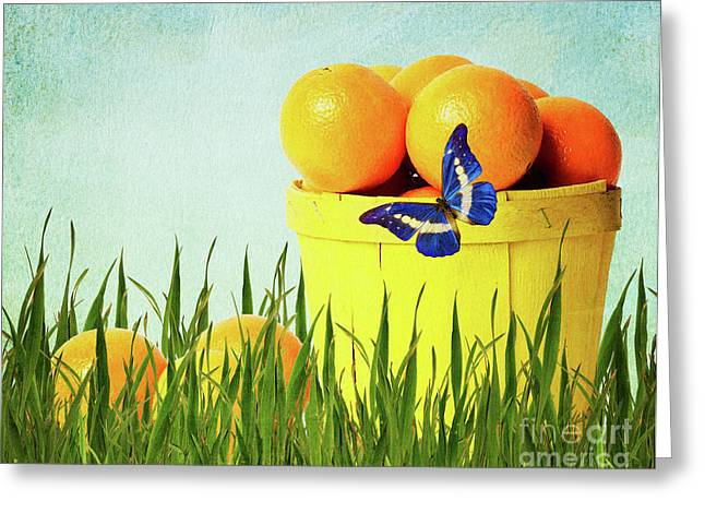 Fresh Food Mixed Media Greeting Cards - Orange Greeting Card by Angela Doelling AD DESIGN Photo and PhotoArt