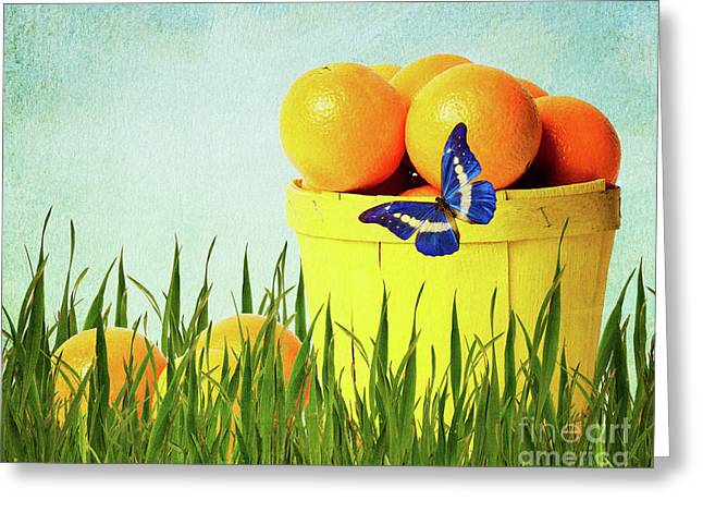 Vitamin C Greeting Cards - Orange Greeting Card by Angela Doelling AD DESIGN Photo and PhotoArt