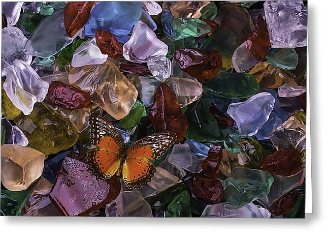 Orange Butterfly On Sea Glass Greeting Card by Garry Gay