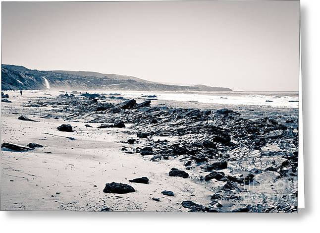 Tide Pooling Greeting Cards - Orange County California Black and White Greeting Card by Paul Velgos