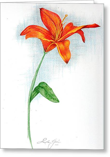 Day Lilly Greeting Cards - Orange Day Lilly Greeting Card by Linda Ginn