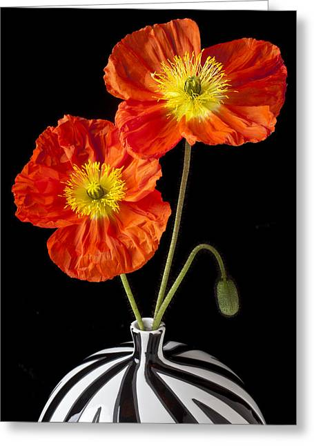 Flora Greeting Cards - Orange Iceland Poppies Greeting Card by Garry Gay