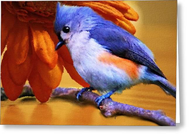 Tufted Titmouse Greeting Cards - Orange Medley Greeting Card by Jai Johnson
