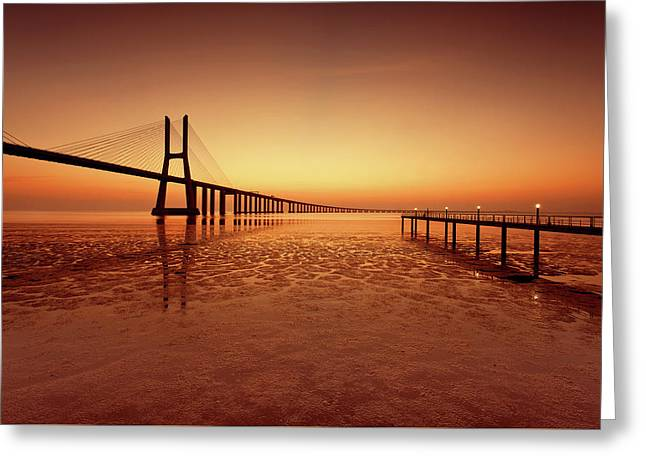Orange Morning Greeting Card by Jorge Maia