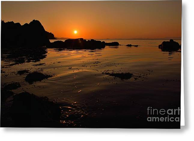 Reflections Of Sun In Water Greeting Cards - Orange Reflections Greeting Card by Elmar Langle