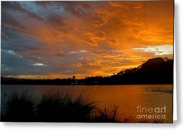Orange Sunset Glow Greeting Card by Kaye Menner