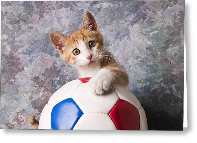 Cuddly Photographs Greeting Cards - Orange tabby kitten with soccer ball Greeting Card by Garry Gay