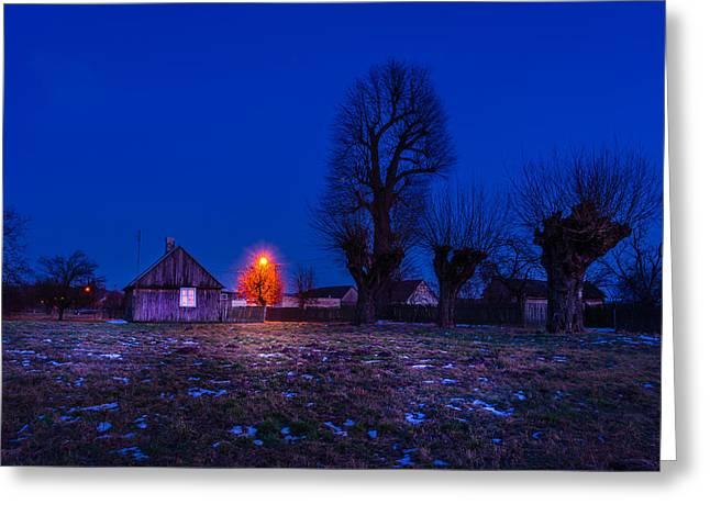Snow Scene Landscape Greeting Cards - Orange tree Greeting Card by Dmytro Korol