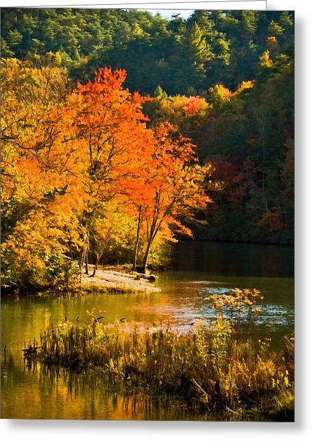 Tennessee River Digital Greeting Cards - Orange Tree Greeting Card by Paul Bartoszek