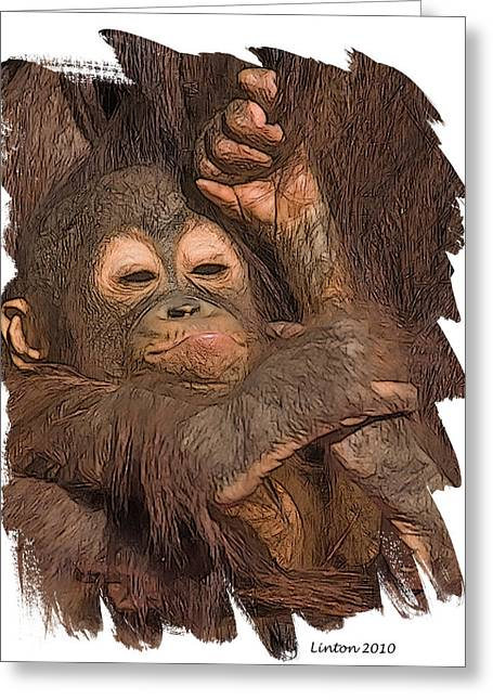 Orangutans Greeting Cards - Orangutan Baby Greeting Card by Larry Linton