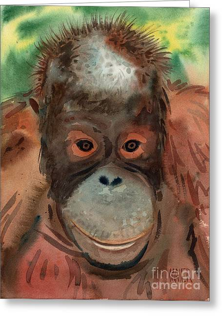 Orangutan Greeting Cards - Orangutan Greeting Card by Donald Maier