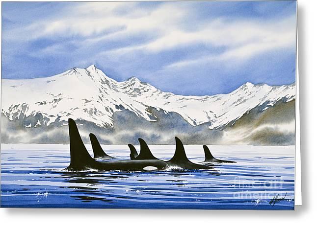 Artist James Williamson Watercolor Greeting Cards - Orca Greeting Card by James Williamson