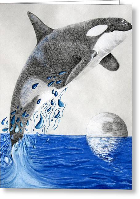 Whale Pastels Greeting Cards - Orca Greeting Card by Mayhem Mediums