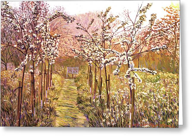Orchard Greeting Cards - Orchard Morning Greeting Card by David Lloyd Glover