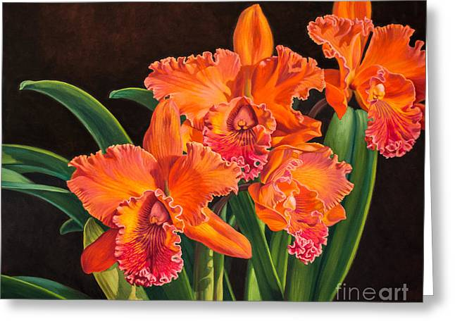 Cattleyas Greeting Cards - Orchid Fever 4 Volcano Queen 1 Greeting Card by Fiona Craig