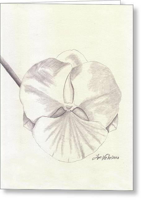 Tender Greeting Cards - Orchid Phalaenopsis Artic Threshold Greeting Card by Jose Valeriano