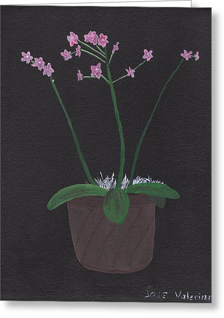 Acrylic Art Greeting Cards - Orchid-Phalaeropsis Hybrid Greeting Card by Jose Valeriano