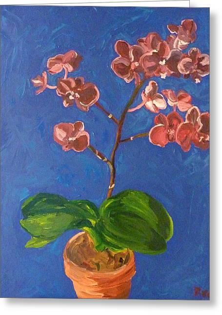 Joshua Redman Greeting Cards - Orchids Greeting Card by Joshua Redman