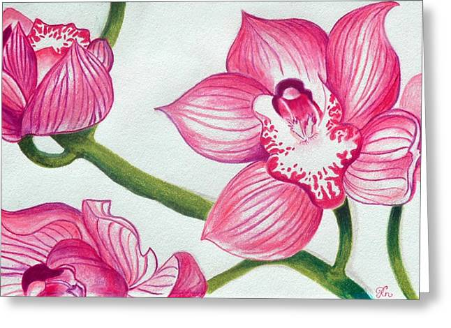 Occasion Drawings Greeting Cards - Orchids Greeting Card by Ramneek Narang