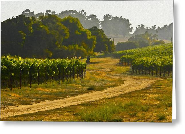 Grapevine Greeting Cards - Orcutt Vineyard Greeting Card by Patricia Stalter