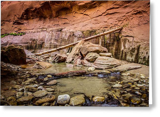 Watchman Greeting Cards - Orderville Canyon Zion National Park Greeting Card by Scott McGuire