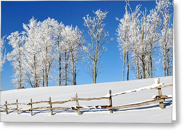 Ore Knob In Snow Panorama Greeting Card by Alan Lenk
