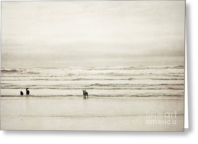 Dog Beach Card Greeting Cards - Oregon Beach Dogs Coast Greeting Card by Andrea Hazel Ihlefeld
