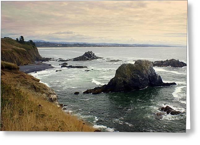 Marty Koch Greeting Cards - Oregon Coast 17 Greeting Card by Marty Koch