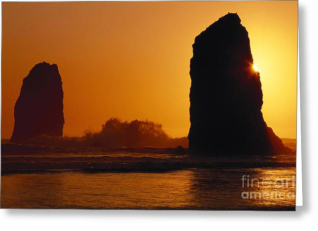 Oregon Photos Greeting Cards - Oregon Coast Greeting Card by Ali ONeal - Printscapes