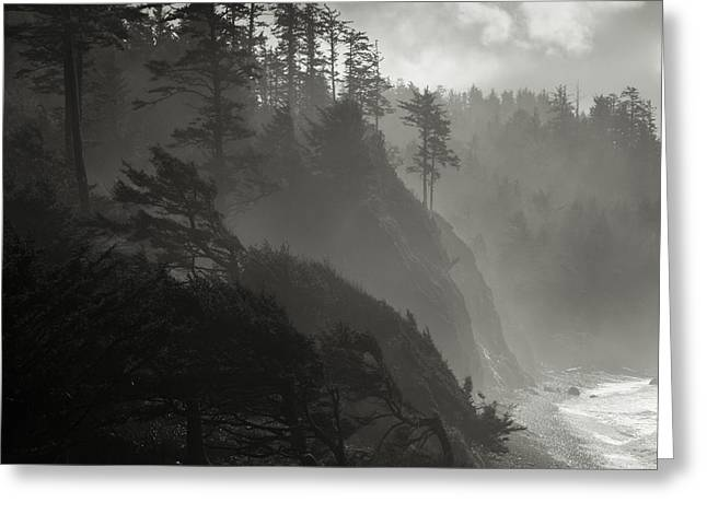 Foggy Beach Greeting Cards - Oregon Coastal Beauty Greeting Card by Chad Davis