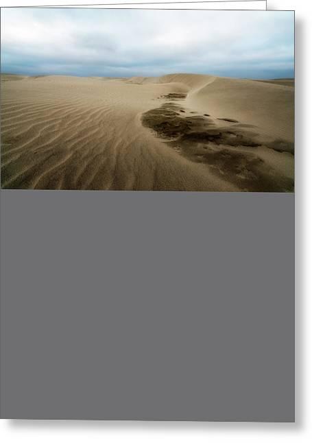 Agate Beach Oregon Greeting Cards - Oregon Dune Wasteland 1 Greeting Card by Ryan Manuel