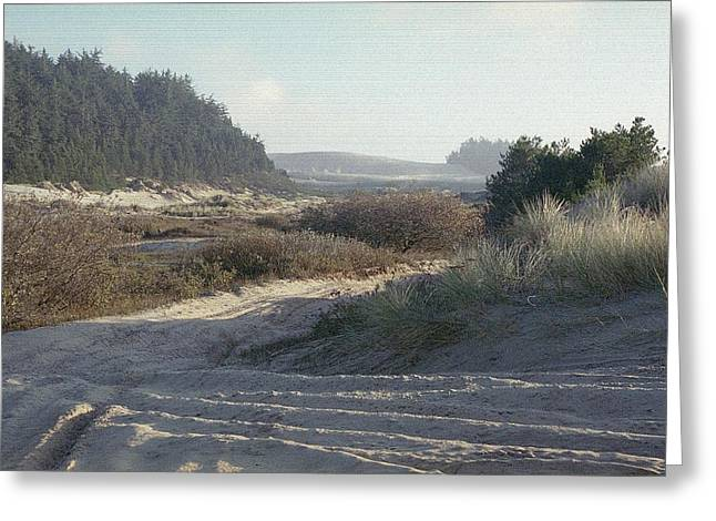 Oregon Dunes National Recreation Area Greeting Cards - Oregon Dunes 5 Greeting Card by Eike Kistenmacher