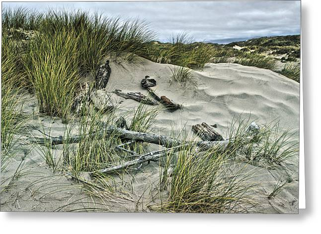 Sand Patterns Greeting Cards - Oregon Dunes Greeting Card by Bonnie Bruno
